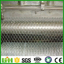 Anping Factory galvanized / pvc coated hexagonal chicken wire mesh