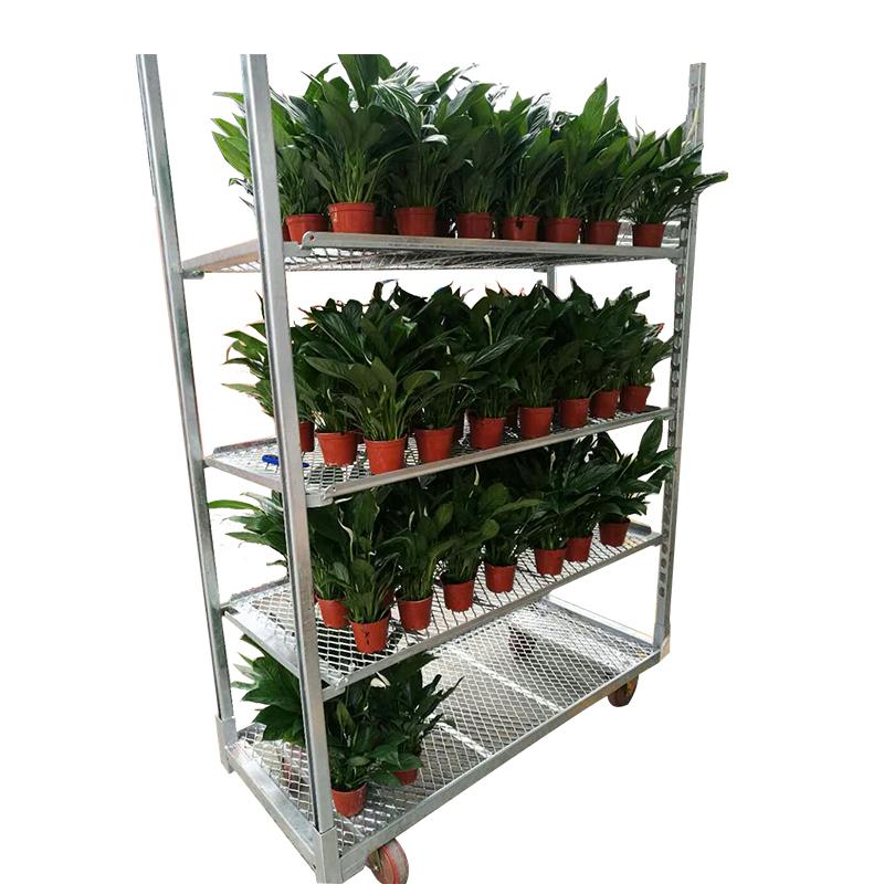 Finden Sie Hohe Qualität Cc Blume Trolley Hersteller und Cc Blume ...