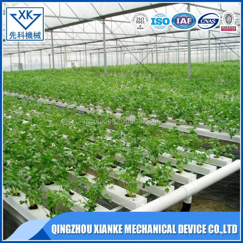 Hydroponic Farm Vegetable Greenhouse Buy Hydroponic Farm Vegetable Greenhouse Hydroponic Greenhouse Product On Alibaba Com