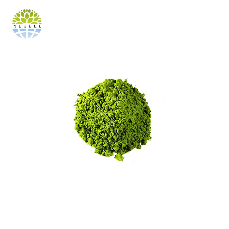 China supplier fresh powder matcha for test - 4uTea | 4uTea.com
