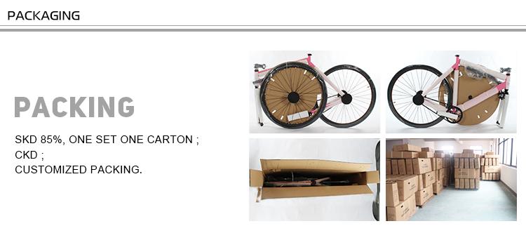 RAYMAX karbon fiber yol bisiklet iskeleti