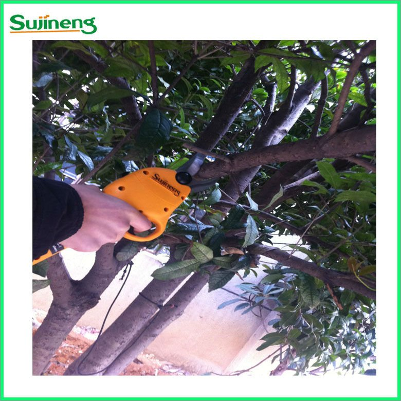 2012 your best choice for garden electric pruner