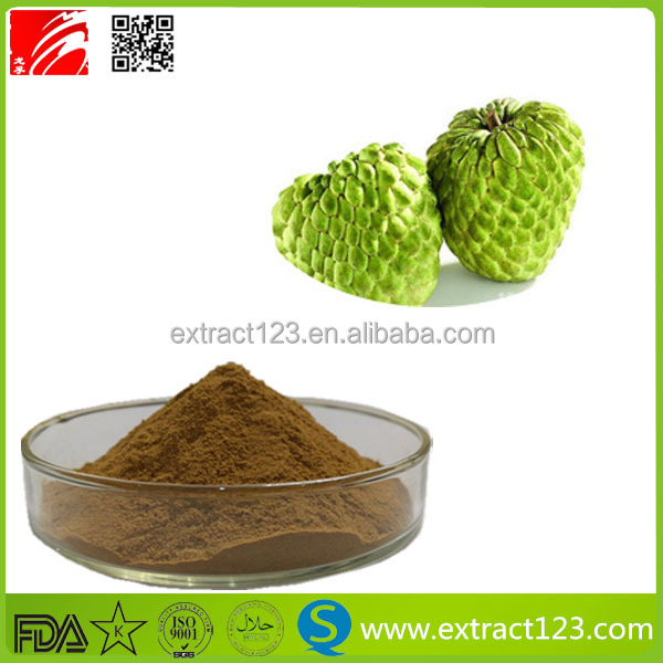 China Manufacturer Soursop Extract Powder /Graviola Powder / Annona muricata