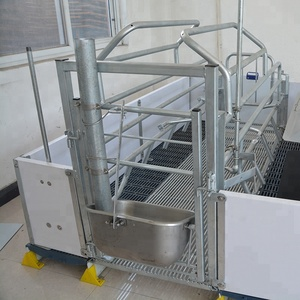Automatic most cost-effictive factory gestation crates farrowing crate for sale pig farrow