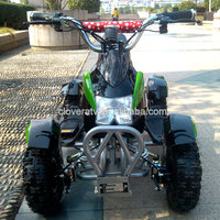 6 inch Wheel Mini Motor Bike Kids ATV 800W 36V Electric Quad