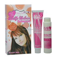 OEM Private Label Salon Use Low Ammonia Permanent Hair Color Cream Organic Hair Color Brand Names