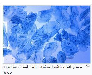 Cas 61-73-4 Methylene Blue For Biological Stain - Buy Methylene Blue,Blue  For Biological Staining Product on Alibaba com