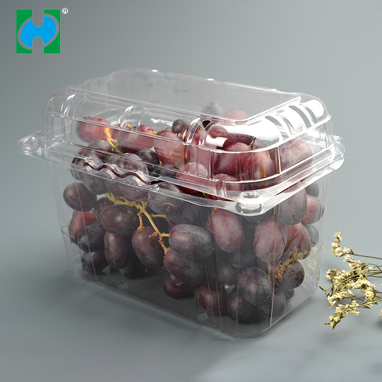 Custom High Quality Packing Food Plastic Storage Container,disposable Plastic Food Container For Fruit