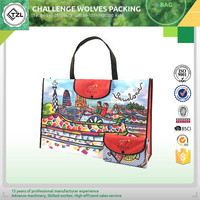 Fashionable shopping bag for shopping