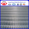 China factory galvanized welded wire mesh(ISO 9001)