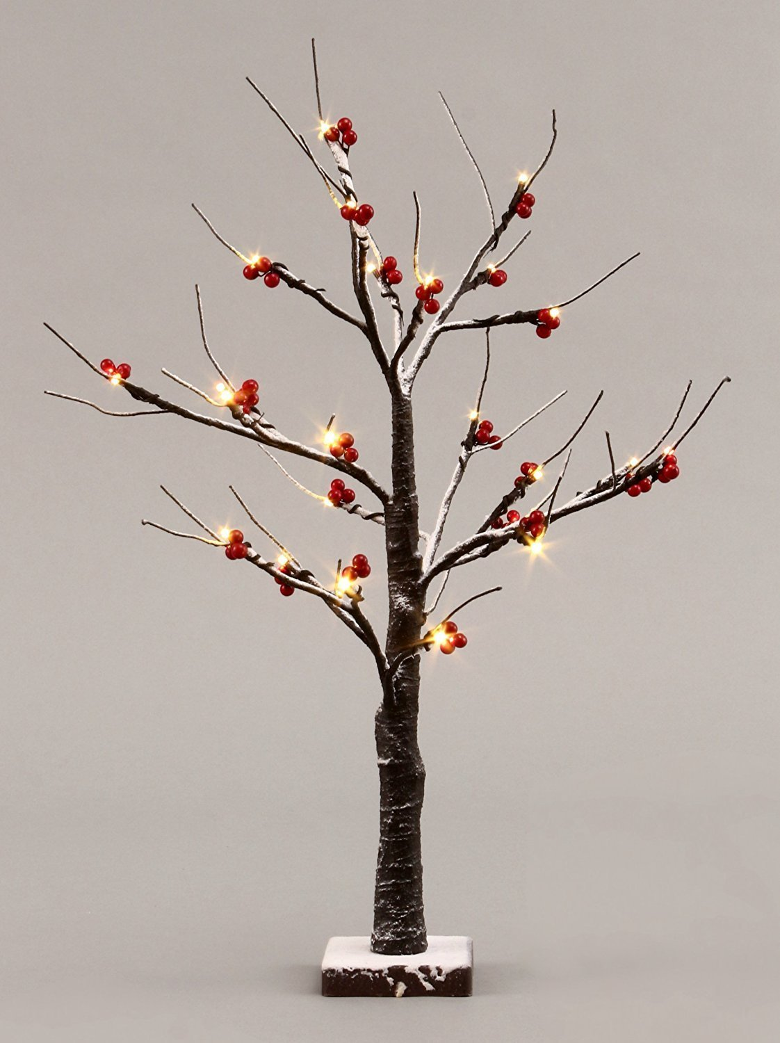 Fashionlite 24 Inch Red Fruits Snow Tree Bonsai LED Light Decorative Baby Night Light Lamp Design for Home/Party/Wedding/Christmas Use Warm White Jewelry Tree SNRT001