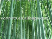 100% Bamboo fiber - Anti-bacteria