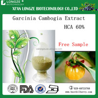 Organic Garcinia cambogia extract with HCA 60% in medicine grade for loss weight tablets making