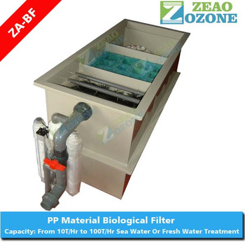 Indoor ras system tilapia hatchery equipment biofilter for Biofiltration pond