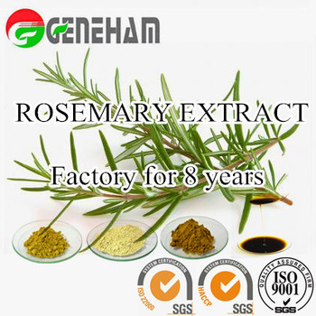 Preservatives In Biscuits Raw Material Rosemary Extract