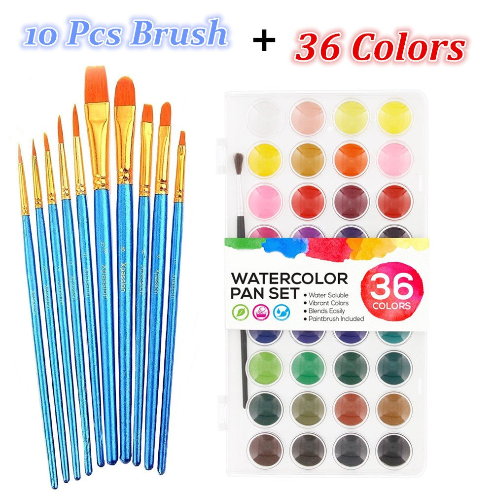 Watercolor Paint Set, 36 Colors Professional Watercolor Art Set with 10 Pcs Watercolor Artist Set Brush for Watercolor Acrylic Painting by CooZero