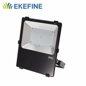 100W Thick Aluminum Led Flood Lighting Luminaries Outdoor Factory Price flood light