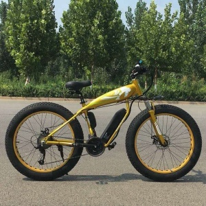 hot sale cheap price fat tire 250w lithium battery electric bicycle