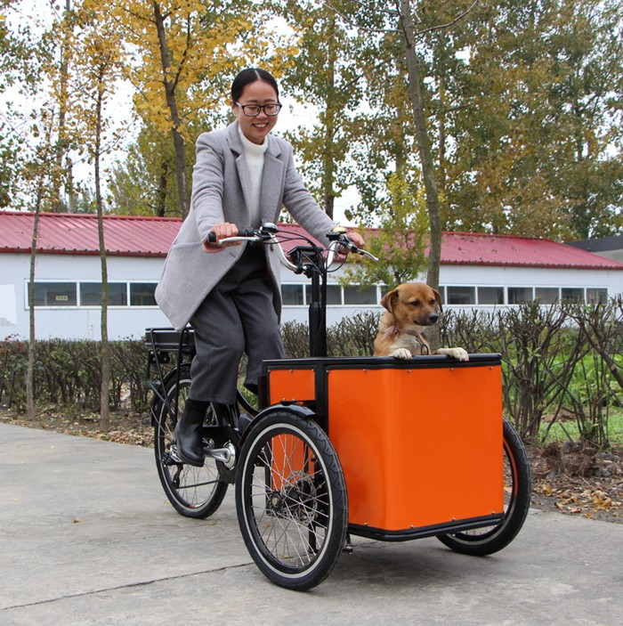 Custom trike cargo tricycle for sale electric cargo bike with lithium battery at factory price