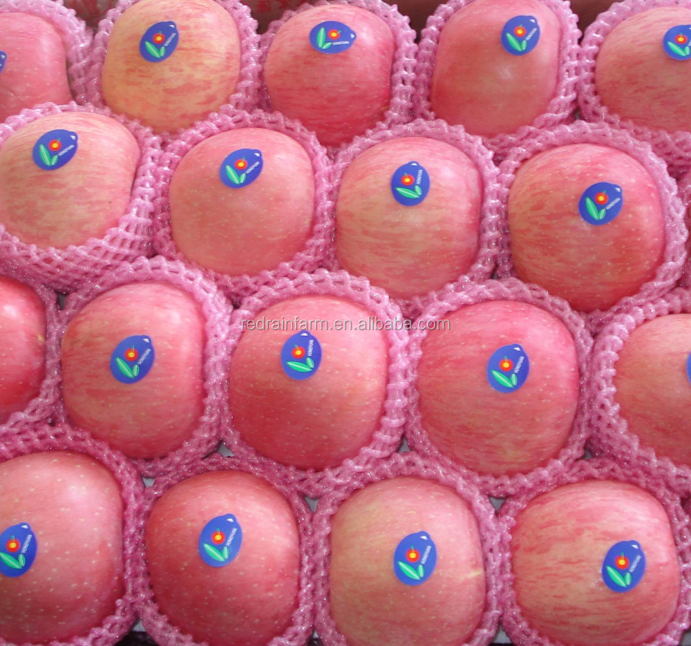 Professional delicious high quality fuji apples wholesale fruit prices