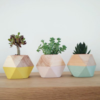 Desktop wooden flowerpot polygon color wood fashion modern decoration