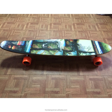 Canadian <span class=keywords><strong>maple</strong></span> <span class=keywords><strong>longboard</strong></span> skate completo