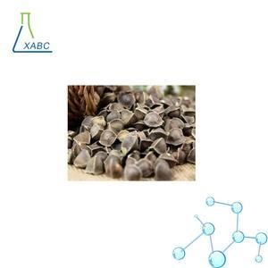 Moringa Oleifera Seeds / Moringa Seeds Best Price