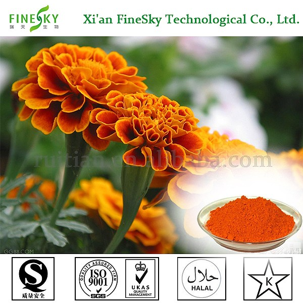 Wholesale super lutein and zeaxanthin price in bulk