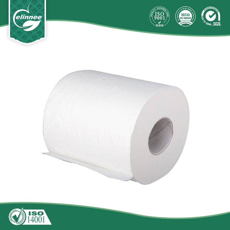 Recycled Pulp Organic Toilet Paper - Buy Organic Toilet Paper ...