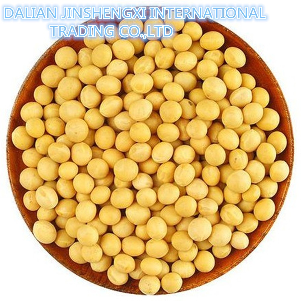 Jsx China Wholesale Soya Bean Superior Dried Myanmar Export Soybeans