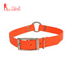 High quality waterproof dog collar, 1-Inch by 22-Inch , orange