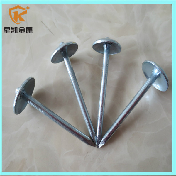 BWG9 2.5inch galvanized umbrella head roofing nails