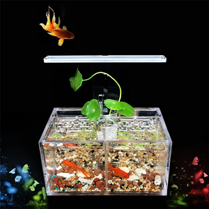 Pet Fish Supplies Wholesale Feature Thailand Betta Fish Plastic Pond Tank