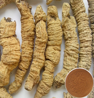Radix Morindae Officinalis Root Extract/morinda root extract/Bacopin powder extract