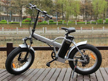 Factory Direct Supplier 48V zoom electric bicycle parts with Tektro Disc Brake