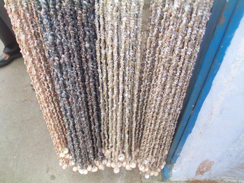 Superb Seashell Curtain   Buy Seashell Curtain Product On Alibaba.com