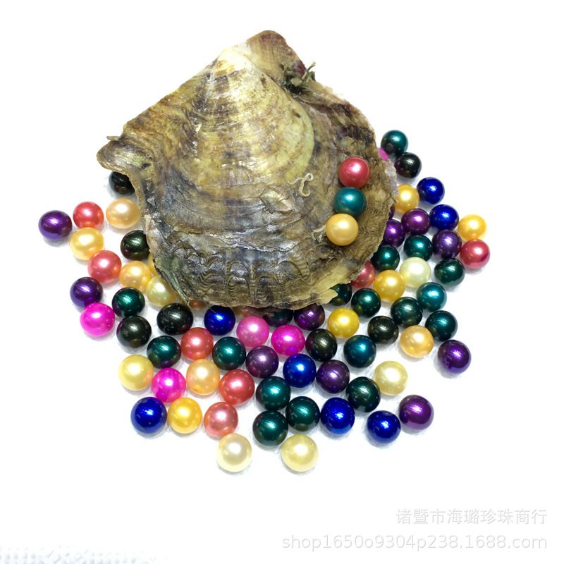 wholesale the sea Akoya mussel is packed with round beads vacuum packed freshwater pearl oyster mussel