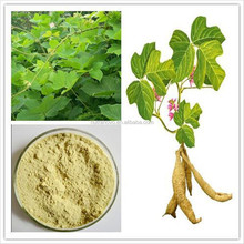100% Natural Hot Sale Puerarin extract//kudzu root extract