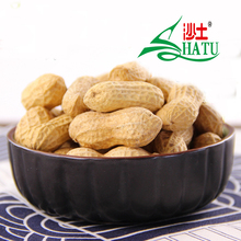 Chinese big size good quality roasted salted peanuts with market price