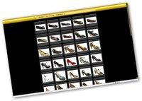 Photo Web Album