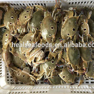 whole round good packing frozen crab for sale