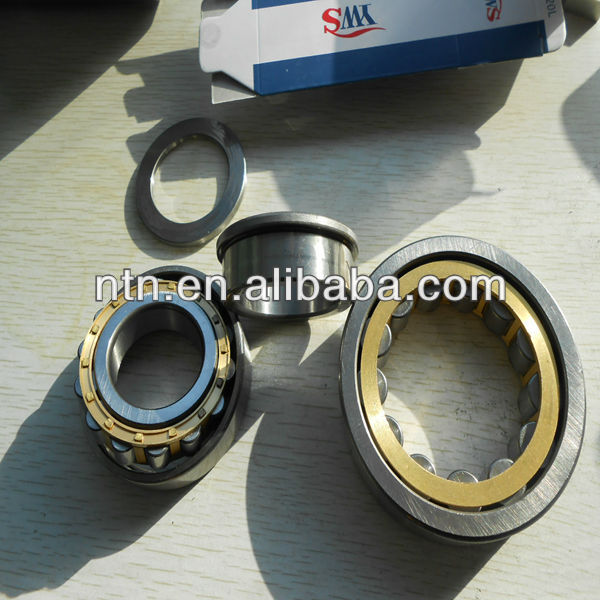 RN205 Brass Cage Chrome steel Cylindrical roller bearing