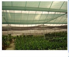 HDPE shade net mesh/green mesh for agricultural or garden