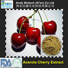 Large Stock Natural VC 5% Acerola Extract Powder