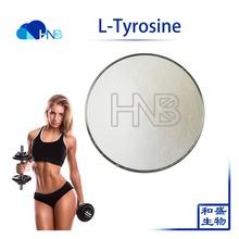 L-tyrosine (amino Acid), L-tyrosine (amino Acid) Suppliers
