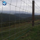 Prairie Protection Net Cheap Cattle Fence Wire Mesh For Livestock anping With T Post