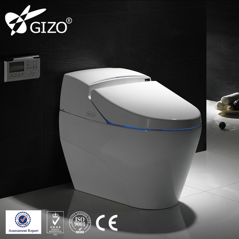 Toilet Bidet Toilet Bidet Suppliers And Manufacturers At Alibabacom - Japanese self cleaning toilet