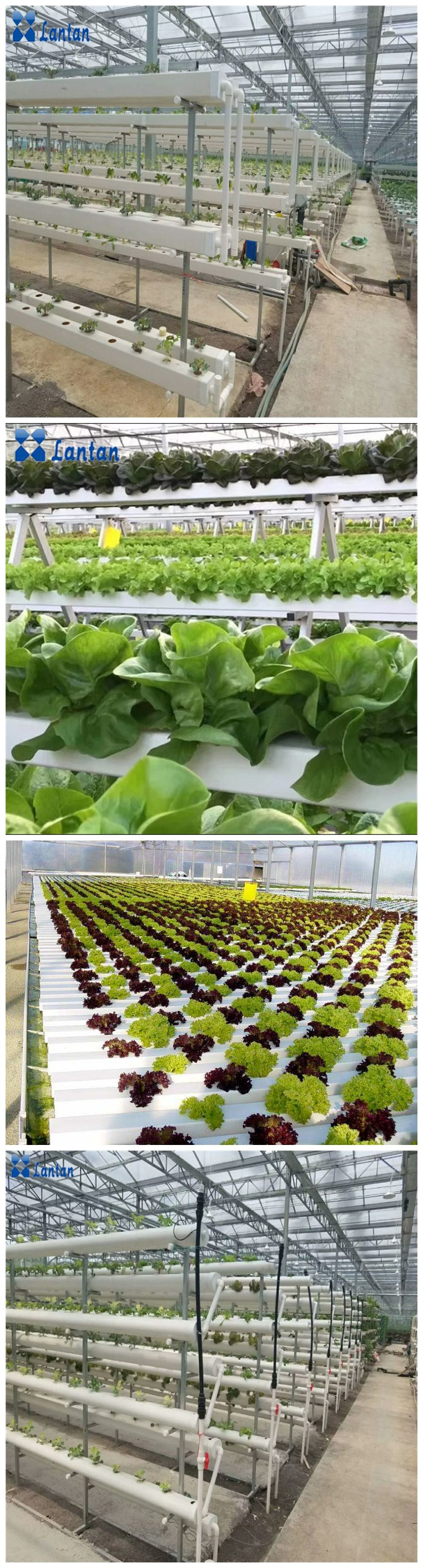 Hot sales Greenhouse Agricultural hydroponic rock wool seedling cubes