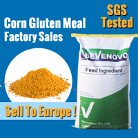 Corn Gluten meal OEM bag Can Be Offer For 65 Protein