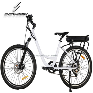 Ride it to your office green city electric bike ebike city electric bicycle with brushless rear hub motor
